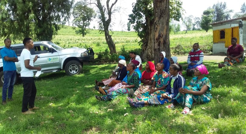 Volunteer in Arusha   Placements & Projects